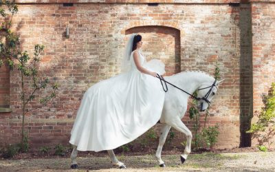 Weddings including animals in Shropshire